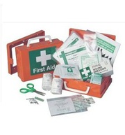 Carry a Vehicle Fist Aid Kit Small from SafetyDirect.ie